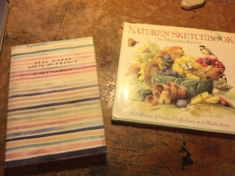 Marjolein Bastin's Nature's Sketchbook and Sara Midda's South of France