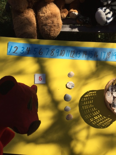 Recognizing numbers counting 5 objects at Montana Bear School